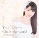 【主題歌】TV チェインクロニクル~ヘクセイタスの閃~ ED「True Destiny」/東山奈央 通常盤の画像