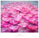 【主題歌】TV 恋は雨上がりのように ED「Ref:rain」/Aimer 通常盤の画像