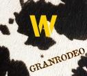 """【アルバム】GRANRODEO/GRANRODEO B-side Collection """"W""""の画像"""
