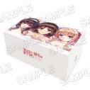 【グッズ-ピローケース】冴えない彼女の育てかた ヒロインコンプリート抱き枕BOXの画像