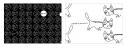 【グッズ-セットもの】小野坂昌也 ニューヤングTV ニャンニャンクリアファイル&詰め合わせシールの画像
