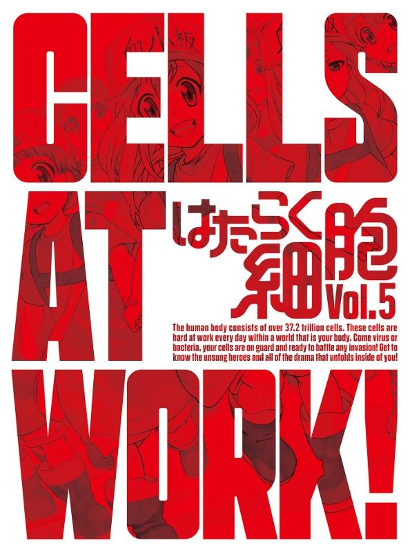 【DVD】TV はたらく細胞 5 完全生産限定版