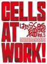 【DVD】TV はたらく細胞 5 完全生産限定版の画像