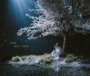 【主題歌】劇場版 Fate/stay night [Heaven's Feel] III.spring song 主題歌「春はゆく」収録CD/Aimer 初回生産限定盤の画像