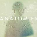 【アルバム】TV ラディアン OP「ナラク」収録アルバム ANATOMIES/Halo at 四畳半の画像