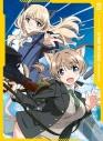 【DVD】TV ストライクウィッチーズ ROAD to BERLIN 第3巻の画像