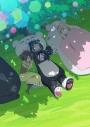 【DVD】TV くまクマ熊ベアー 第2巻の画像
