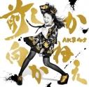 【マキシシングル】AKB48/前しか向かねえ Type C 通常盤の画像