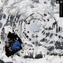【アルバム】緒方恵美/劇薬 -Dramatic Medicine-の画像