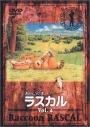 【DVD】あらいぐまラスカル 4の画像