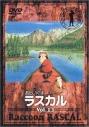 【DVD】あらいぐまラスカル 13の画像