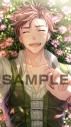 【DLカード】DAME×PRINCE デジタルギャラリー ダウンロードカード アニメイト限定セット アクリルギャラリー ≪テオ≫の画像