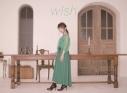 【アルバム】藤田麻衣子/wish 初回限定盤の画像