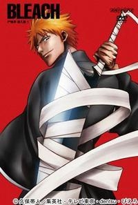 【DVD】TV BLEACH 尸魂界潜入篇1 初限