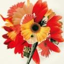【アルバム】花は咲くプロジェクト arrangement by 菅野よう子/ハナハサクの画像