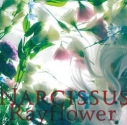 【アルバム】Rayflower/Narcissusの画像