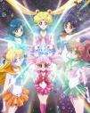 【DVD】Web 美少女戦士セーラームーンCrystal 第13巻 通常版の画像