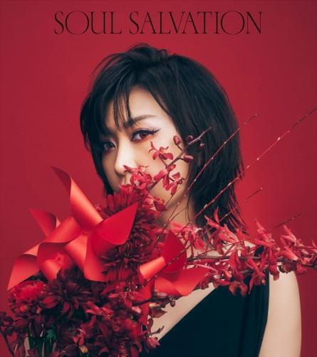 【主題歌】TV SHAMAN KING 主題歌「Soul salvation」/林原めぐみ