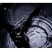 ゲーム 戦国無双4 テーマソング「Reverb」/黒夢 CD+Blu-ray 初回生産限定盤