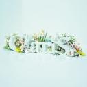 【アルバム】ClariS/ClariS ~SINGLE BEST 1st~ 初回生産限定盤 Blu-ray付の画像