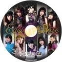 【グッズ-バインダー】BanG Dream! 『Edel Rose』メイキングDVD&9ポケットバインダーの画像