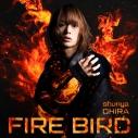 【主題歌】TV 灼熱カバディ OP「FIRE BIRD」/大平峻也 初回限定盤 Red Editionの画像