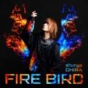 【主題歌】TV 灼熱カバディ OP「FIRE BIRD」/大平峻也 通常盤の画像
