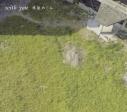 【アルバム】林原めぐみ/岡崎律子トリビュートアルバム with you 期間限定盤の画像