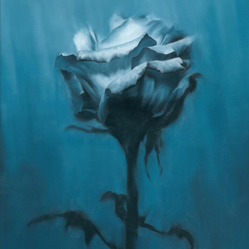 【アルバム】TV キングダム ED「Deep inside」収録アルバム Deep inside+Unknown best/waterweed