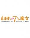 【DVD】TV 山田くんと7人の魔女 Vol.6の画像