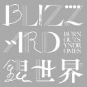 【主題歌】TV ましろのおと OP「BLIZZARD/銀世界」/BURNOUT SYNDROMES 初回生産限定盤の画像
