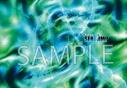 【グッズ-パンフレット】舞台「SERVAMP-サーヴァンプ-」 パンフレットの画像
