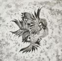 【主題歌】TV バック・アロウ 2ndクール ED「United Sparrows」/FLOW 初回生産限定盤の画像