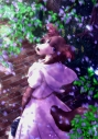 【DVD】TV BEASTARS Vol.4 初回生産限定版の画像