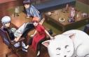 【DVD】TV 銀魂゜ 1 完全生産限定版の画像