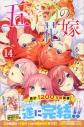 【コミック】五等分の花嫁(14) 特装版の画像
