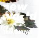【主題歌】TV ノー・ガンズ・ライフ 第2期 ED「new world」/THIS IS JAPANの画像