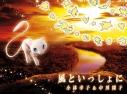 【主題歌】映画 ミュウツーの逆襲 EVOLUTION 主題歌「風といっしょに」/小林幸子&中川翔子 期間生産限定盤の画像