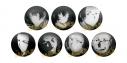 【グッズ-バッチ】文豪ストレイドッグス シークレットモノクロ缶バッチ-黒の時代-【アニメイト特典付】の画像