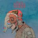 【アルバム】米津玄師/STRAY SHEEP アートブック盤(CD+DVD+アートブック)の画像