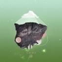 【主題歌】TV BORUTO-ボルト- NARUTO NEXT GENERATIONS ED「ライカ」/Bird Bear Hare and Fish 初回生産限定盤の画像