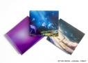 【主題歌】劇場版 Fate/stay night [Heaven's Feel] 3部作主題歌「花の唄/I beg you/春はゆく」/Aimer 完全生産限定盤の画像