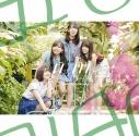 【マキシシングル】日向坂46/ドレミソラシド Type-Cの画像