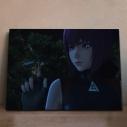【グッズ-飾り物】攻殻機動隊 SAC_2045 アニピクメモリアルウォール 草薙素子 3の画像