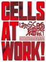 【DVD】TV はたらく細胞 1 完全生産限定版の画像