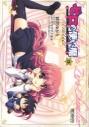 【コミック】ゼロの使い魔 シュヴァリエ(3)の画像