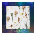 【アルバム】nano.RIPE/ピッパラの樹の下で 初回限定盤の画像