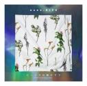 【アルバム】nano.RIPE/ピッパラの樹の下で 通常盤の画像