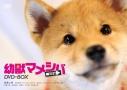 【DVD】TV 幼獣マメシバ 望郷編 DVD-BOXの画像