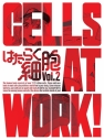 【DVD】TV はたらく細胞 2 完全生産限定版の画像